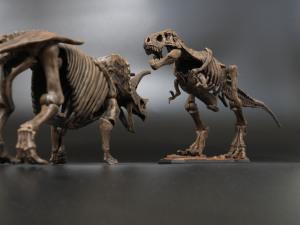 恐竜骨格プラモデル